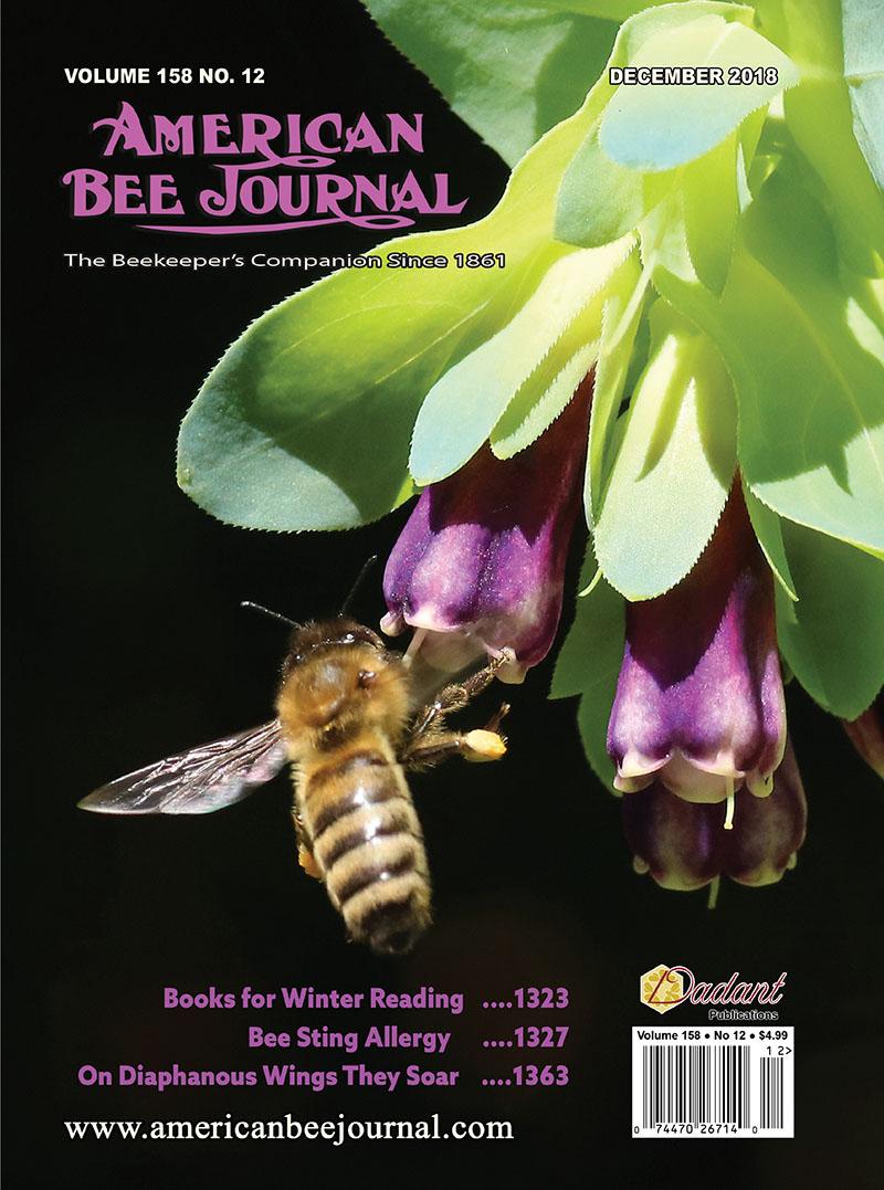 December ABJ Cover