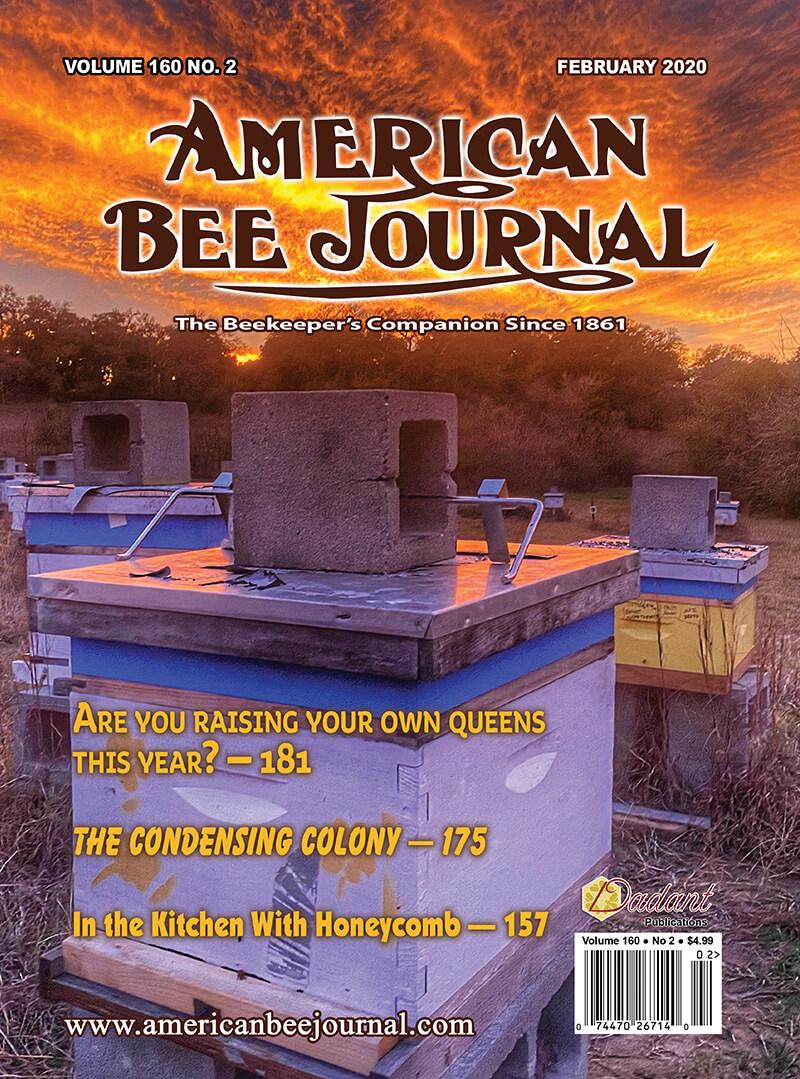 February 2020 ABJ Cover