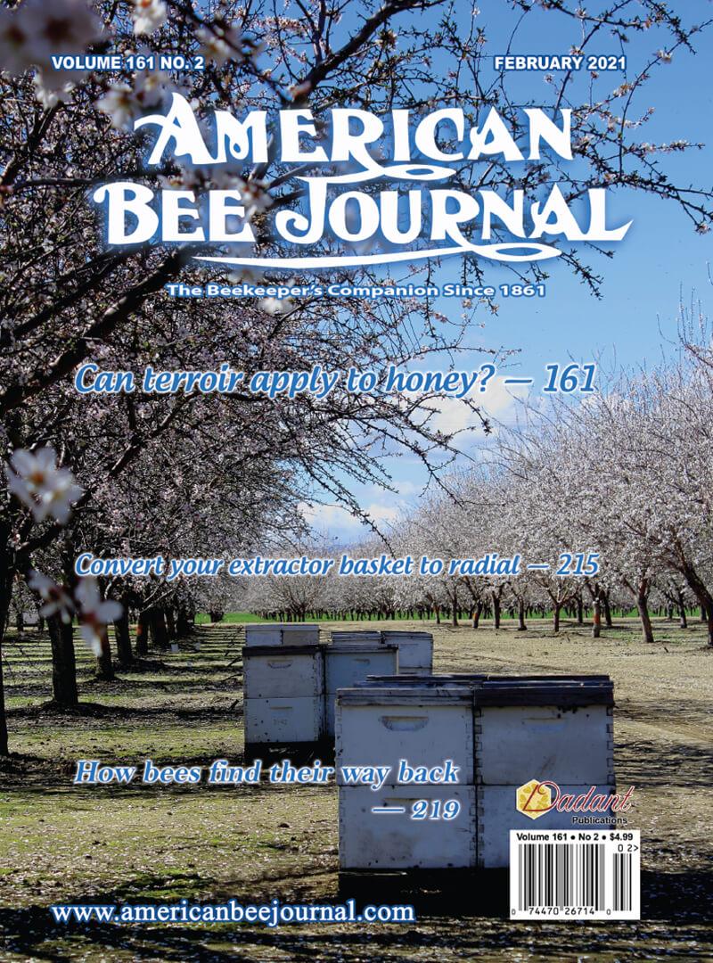 ABJ February 2021 Cover