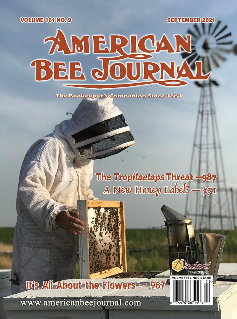 ABJ September 2021 Cover